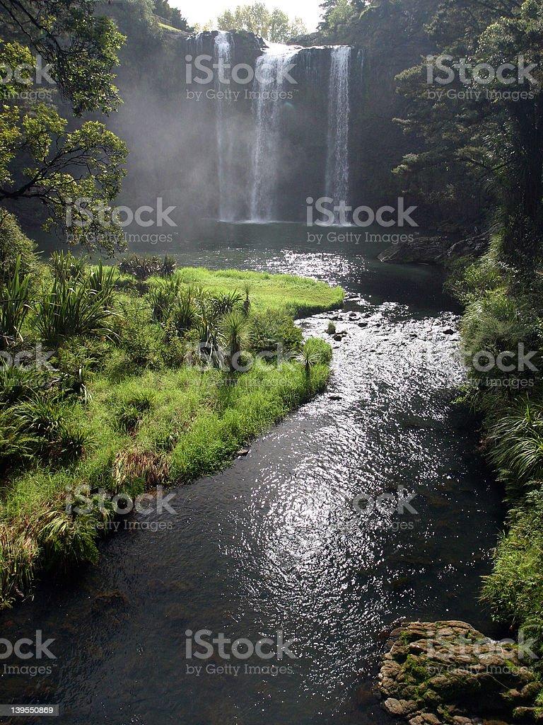 Whangarei Falls, NZ royalty-free stock photo