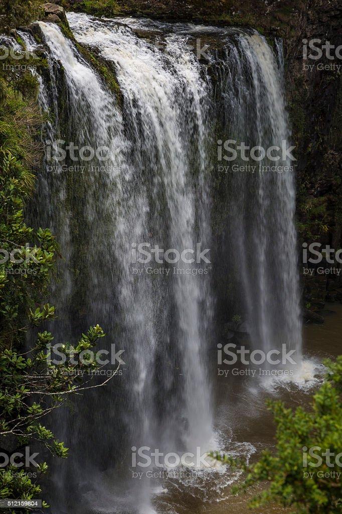 Whangarei Falls stock photo