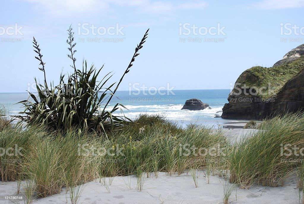 Wharariki Beach, Golden Bay's West Coast, NZ royalty-free stock photo