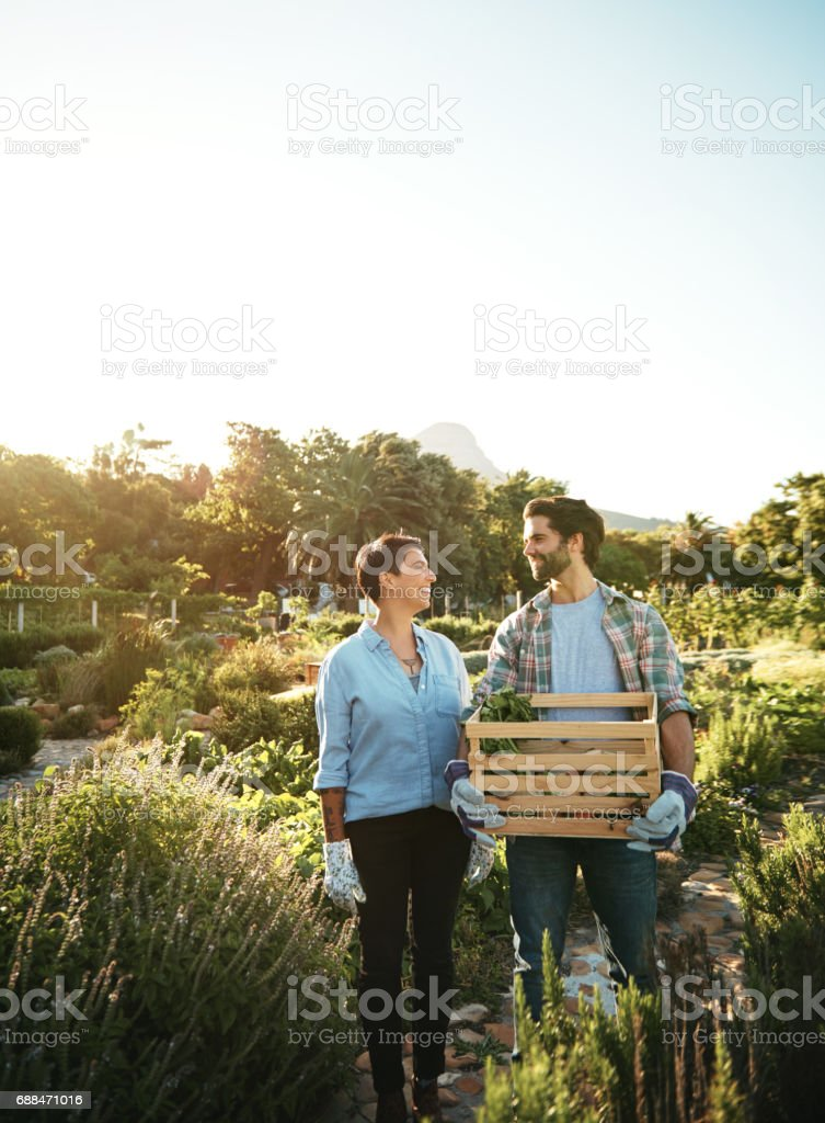 What a great season it's been stock photo