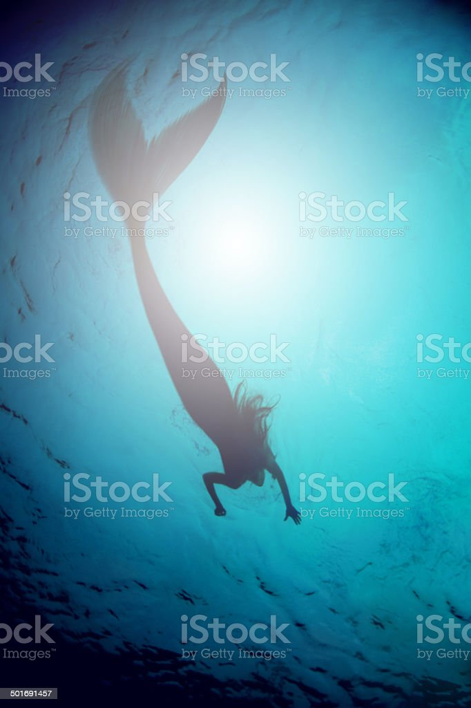 What beauty lurks beneath? stock photo