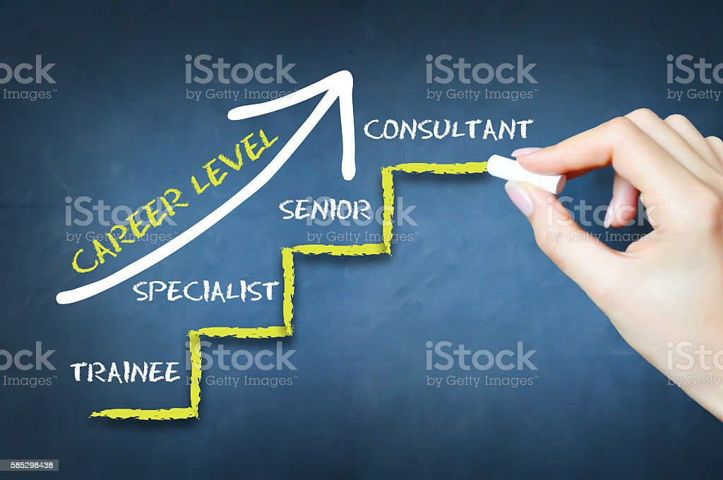 What is your career level or work experience stages stock photo