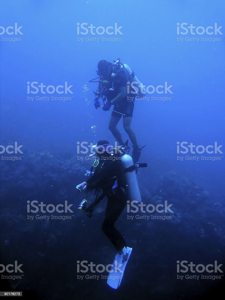 what lies below scuba divers philippines royalty-free stock photo