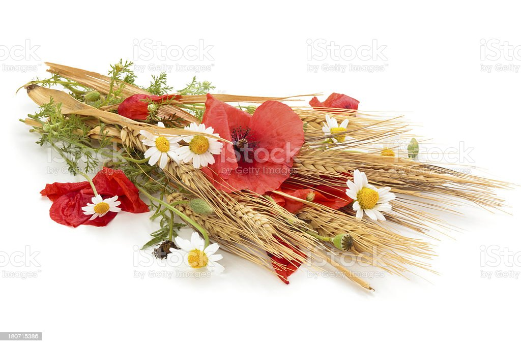 Wheat and flowers. royalty-free stock photo