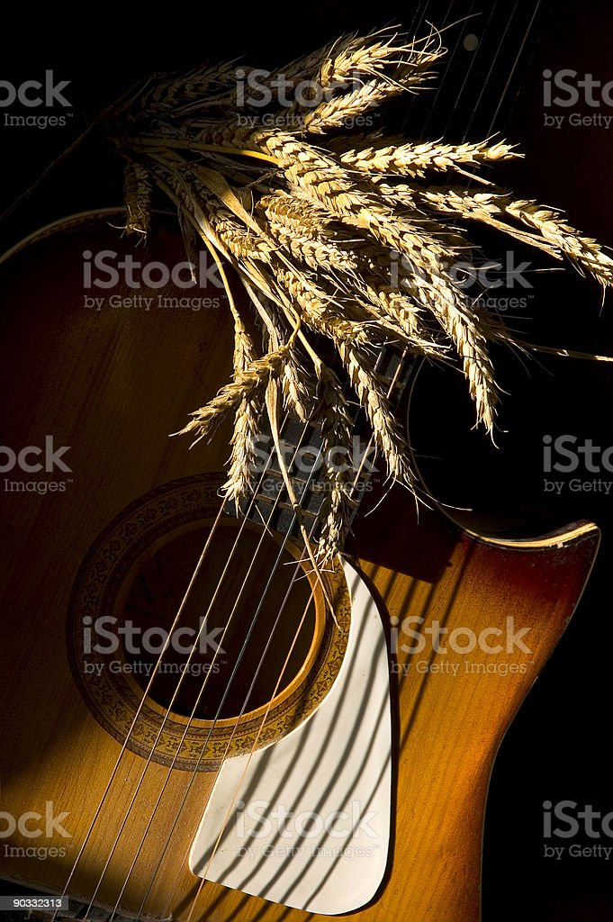 Wheat and guitar stock photo