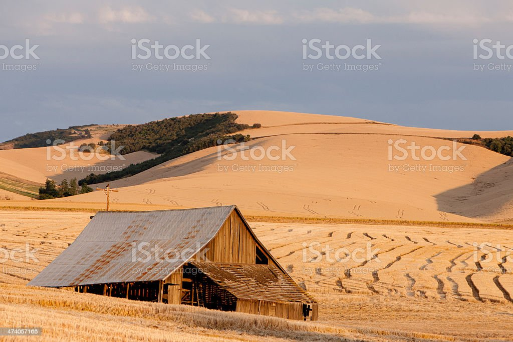 Wheat Barn stock photo