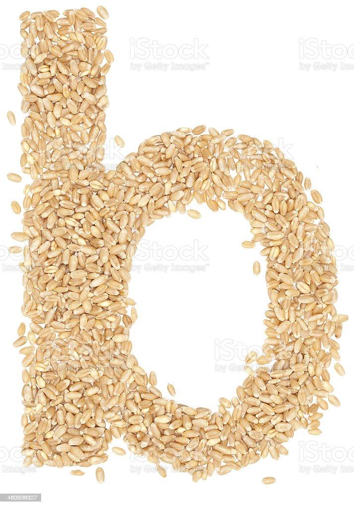 wheat berries stock photo