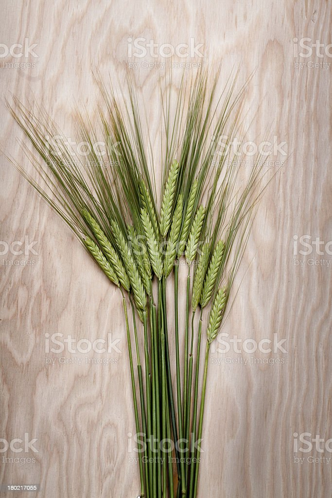 wheat bundle royalty-free stock photo
