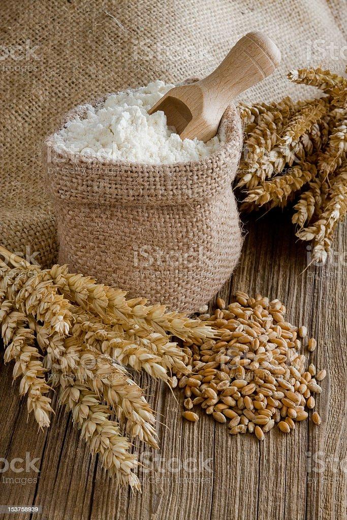 Wheat ear royalty-free stock photo