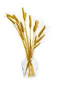 Wheat ears in a glass jug