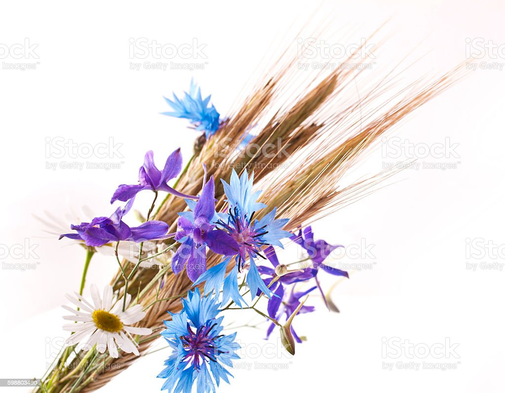 Wheat ears with flowers stock photo