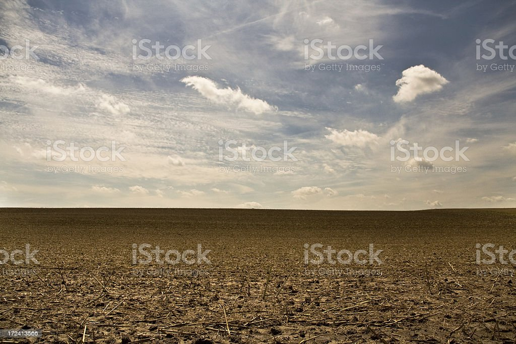 wheat field after harvest royalty-free stock photo