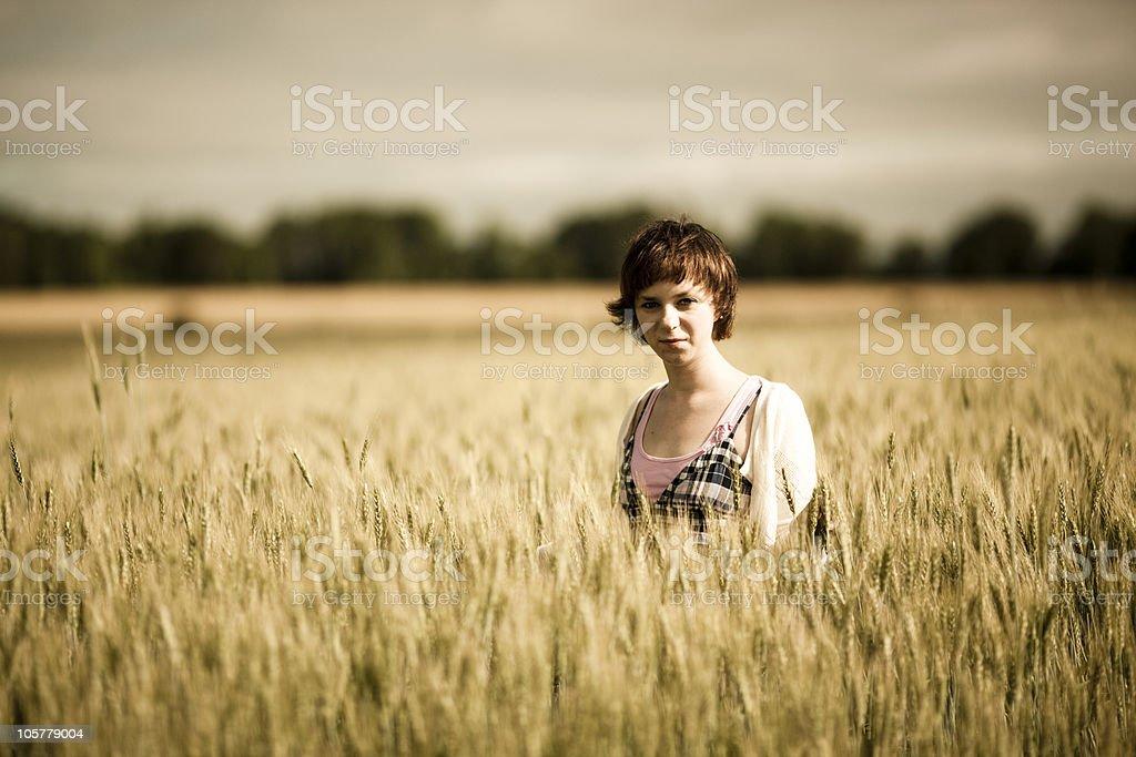 Wheat field standing girl. stock photo