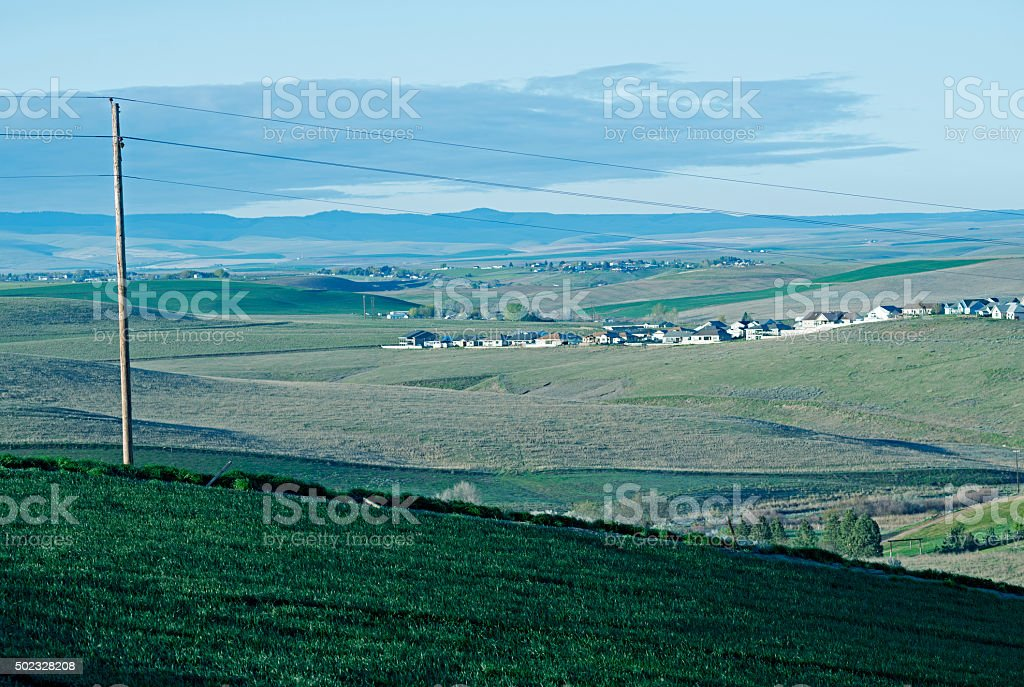Wheat fields and housing development in Oregon stock photo