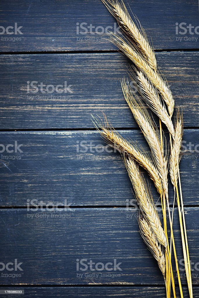 Wheat frame stock photo