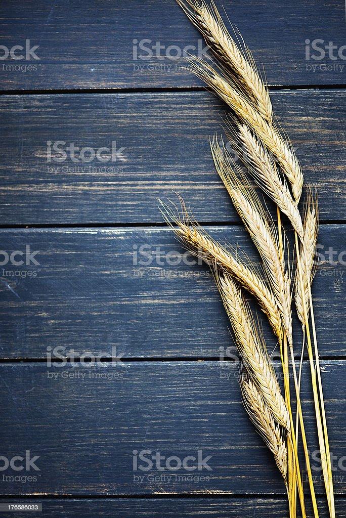 Wheat frame stock photo