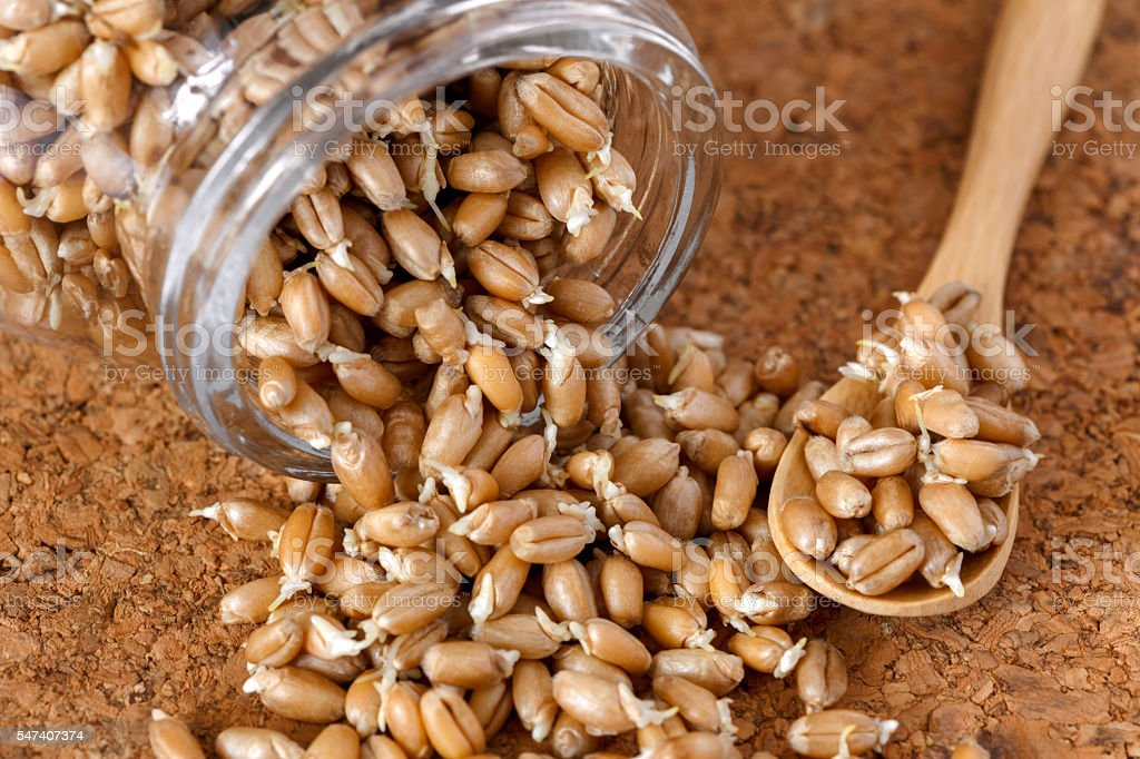 wheat germ in a glass jar on the cork background stock photo