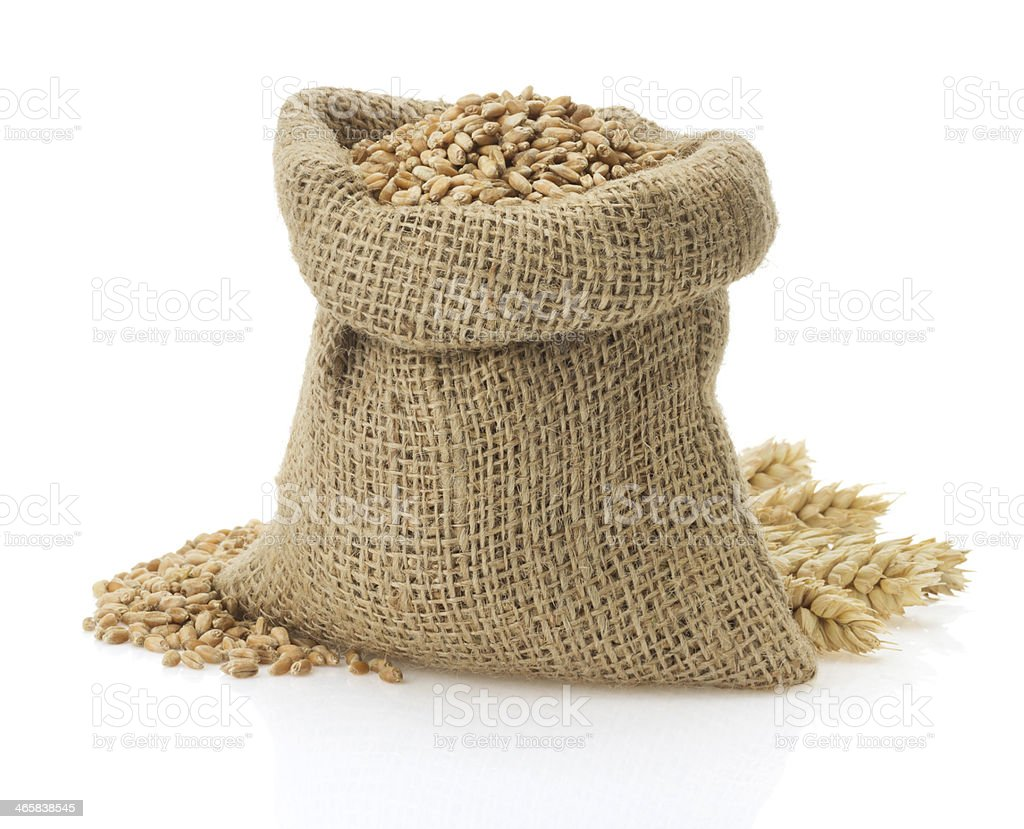 wheat grain on white stock photo