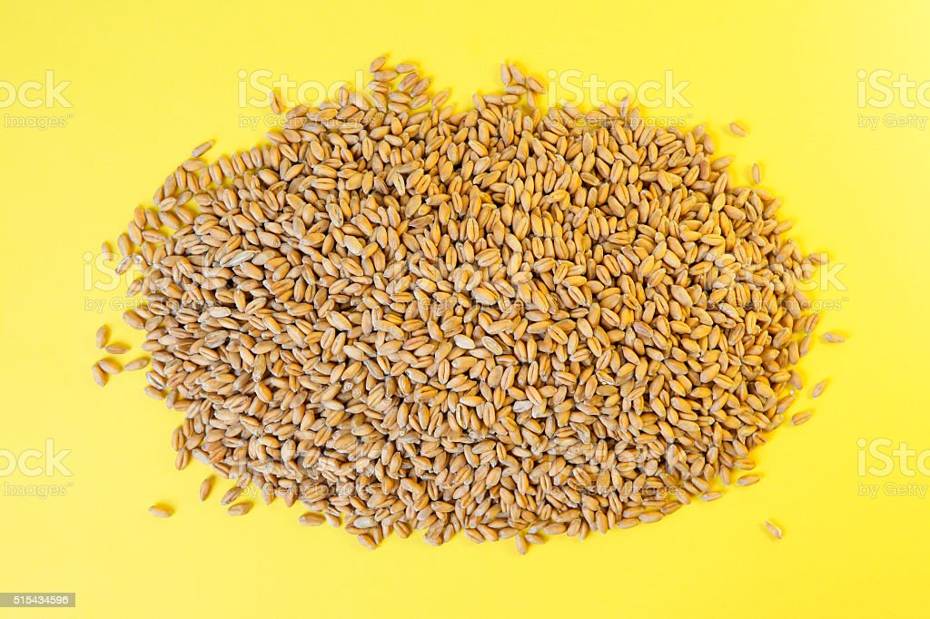 Wheat grains on a yellow background. stock photo