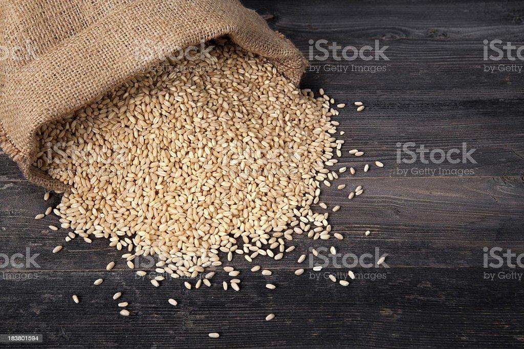 Wheat grains stock photo