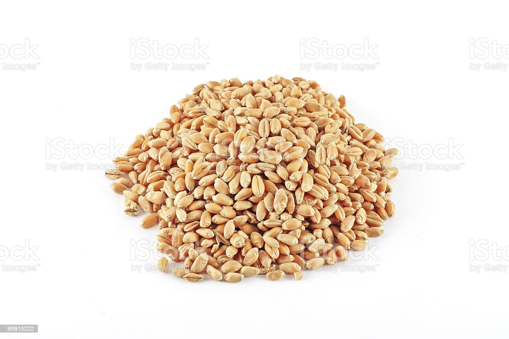 Wheat grains royalty-free stock photo