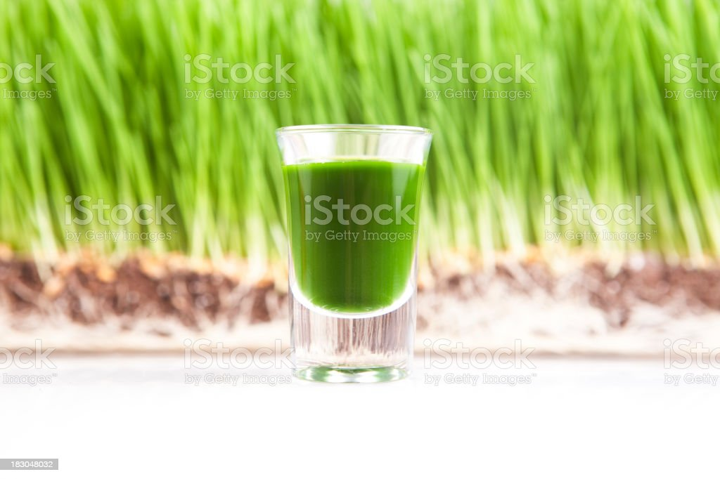 Wheat Grass Juice royalty-free stock photo