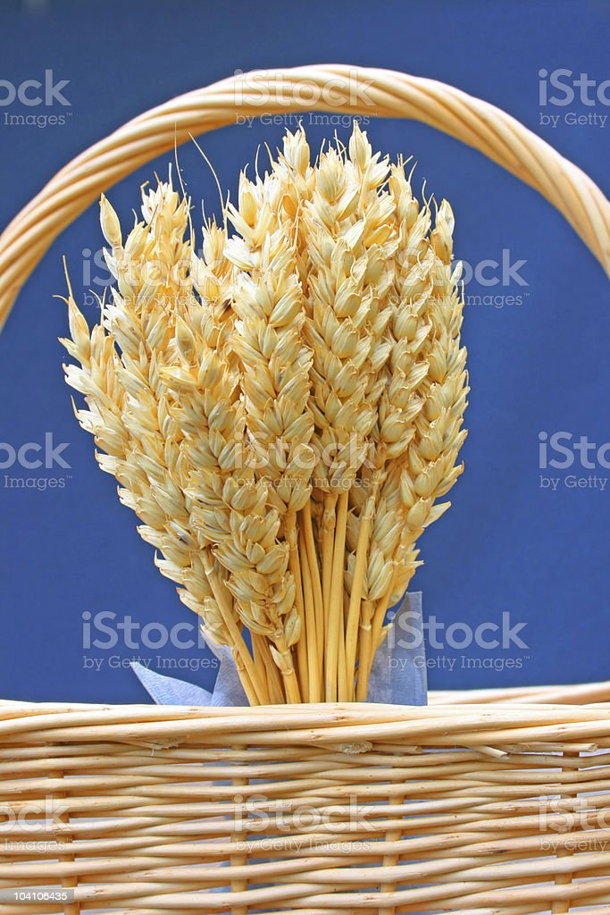 Wheat in basket stock photo