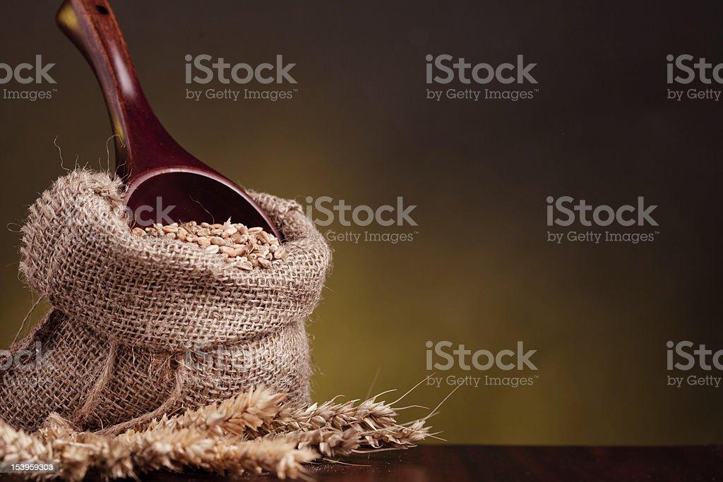 Wheat in burlap sack royalty-free stock photo