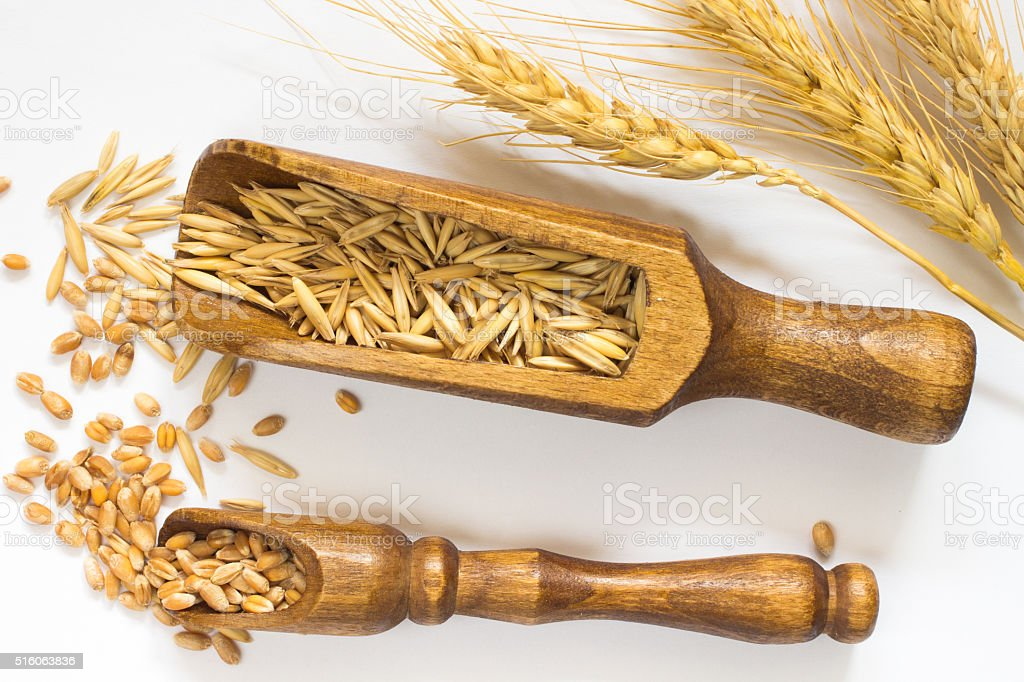 Wheat in small wooden spoon. Oats in a large wooden spoon stock photo