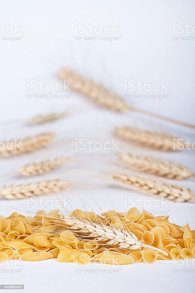 wheat macaroni stock photo