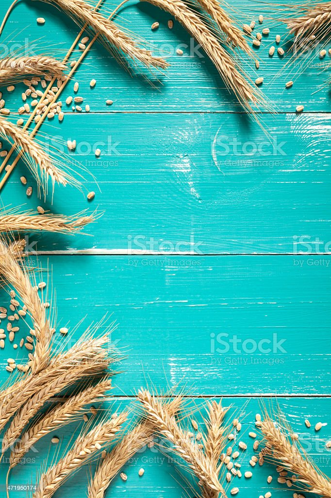 Wheat on turquoise table stock photo