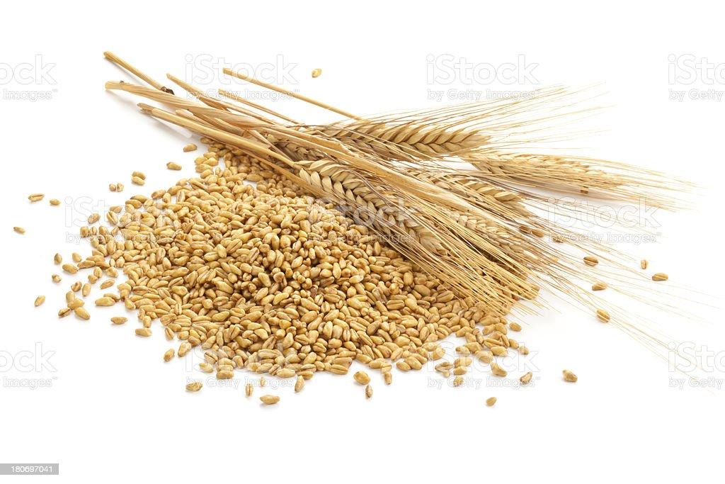 Wheat. stock photo