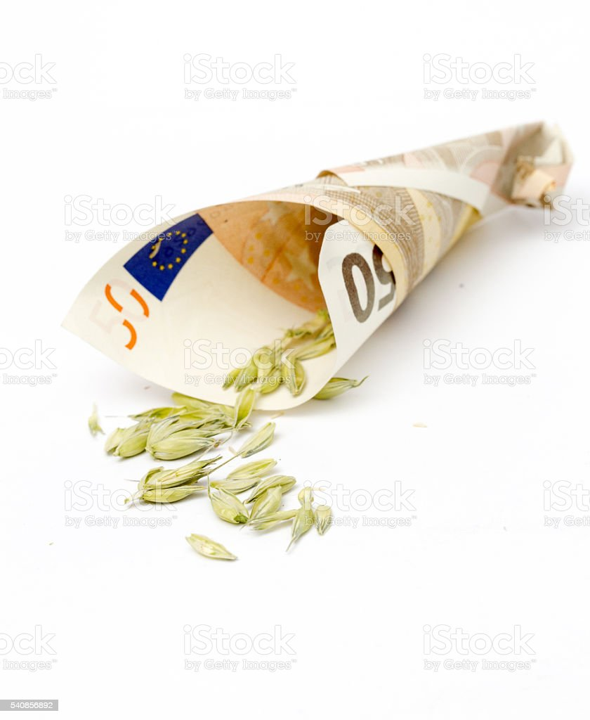 wheat spilling out from euro banknote stock photo
