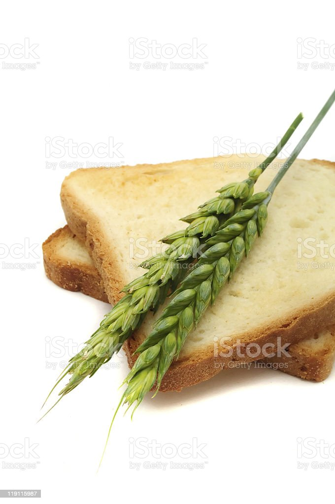 Wheat Toasts with Ears royalty-free stock photo
