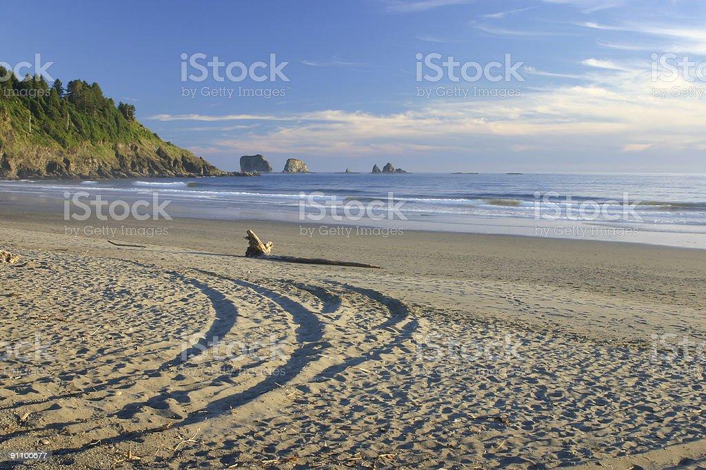 Wheel Tracks on 1st Beach stock photo