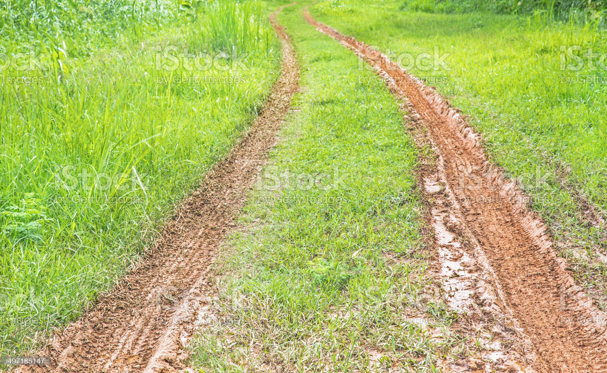 Wheel tracks on red color marshy road after raining royalty-free stock photo