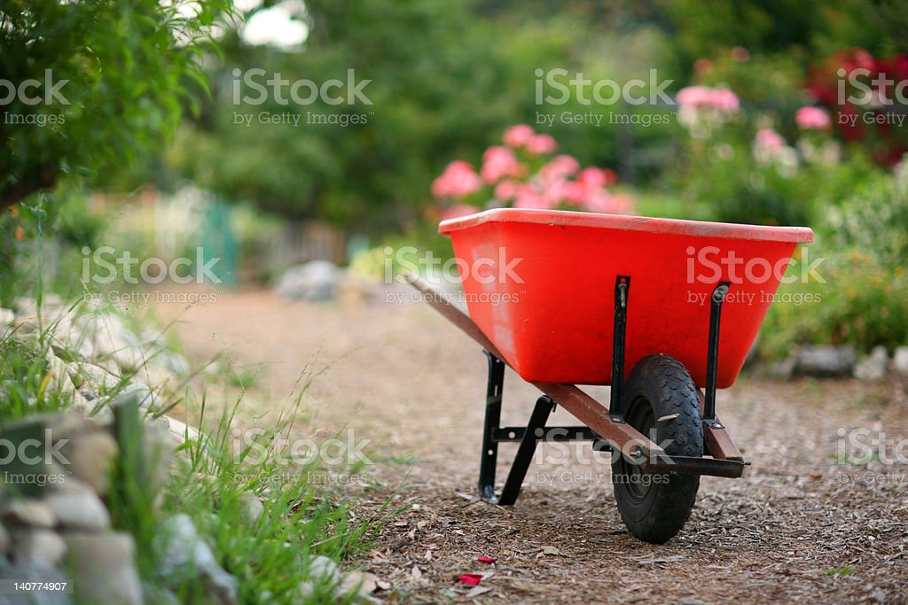 Wheelbarrow in a blooming garden stock photo