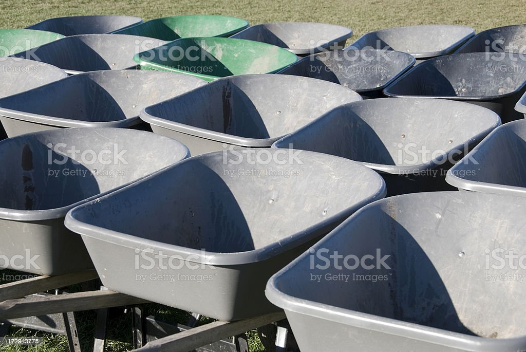 Wheelbarrows for pumpkin harvest royalty-free stock photo