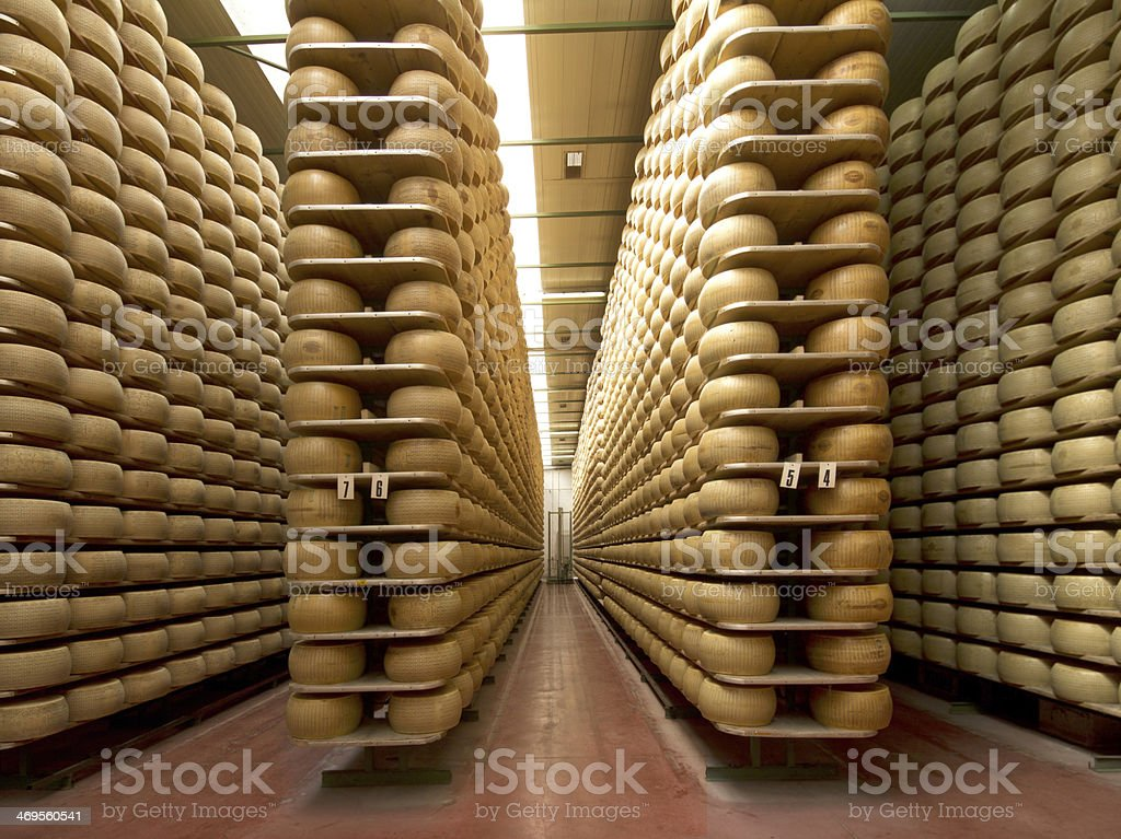 wheels of cheese stock photo