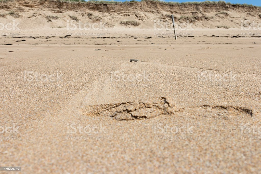 When it's low tide royalty-free stock photo