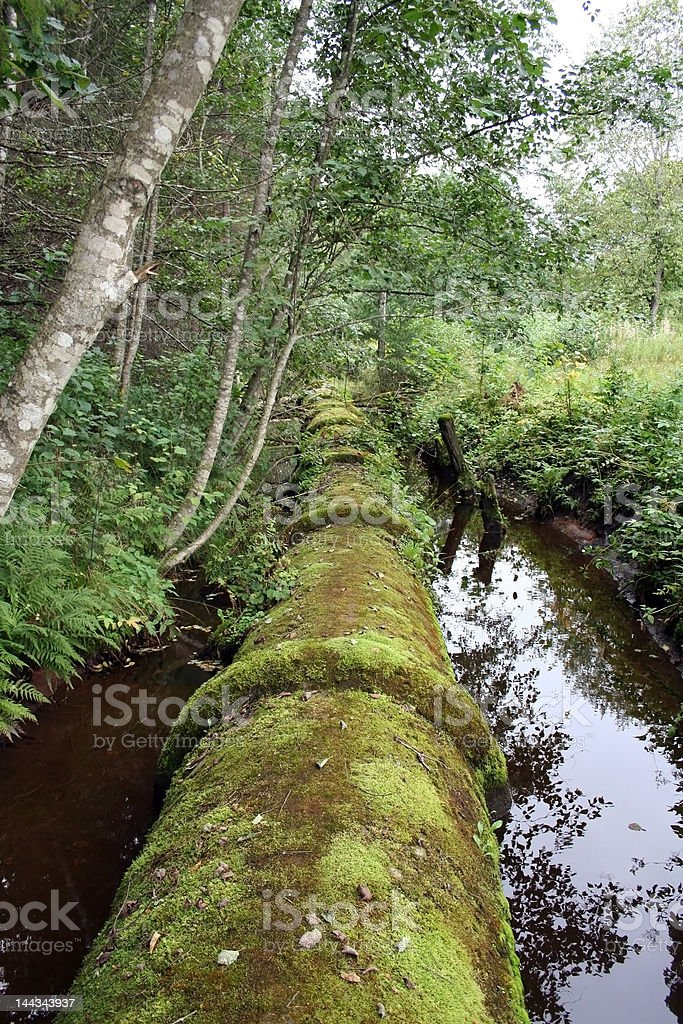 When pipe meets nature royalty-free stock photo