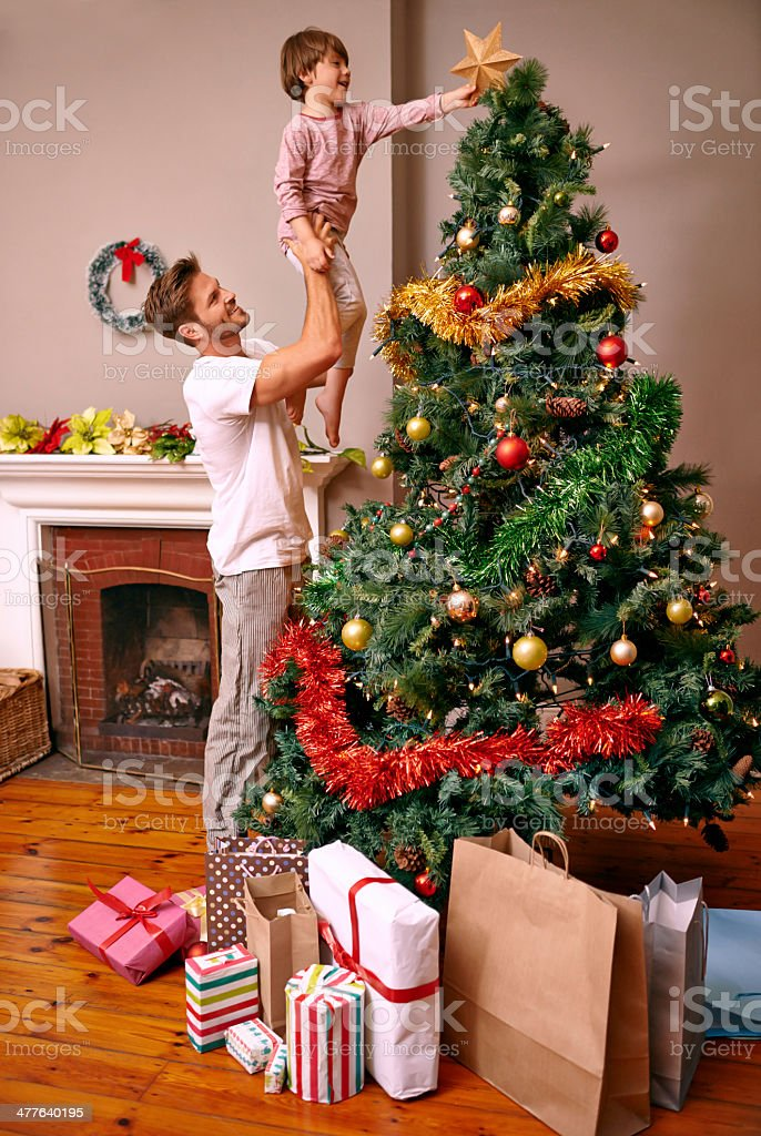 When you're small, Christmas trees are tall... stock photo