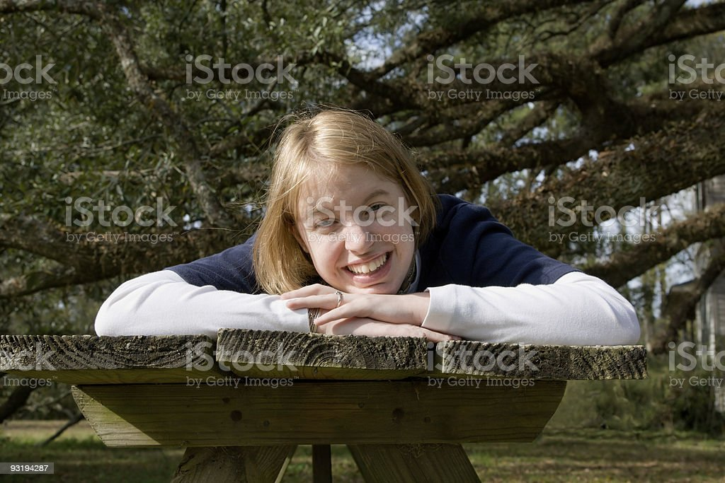 When's the Picnic? royalty-free stock photo