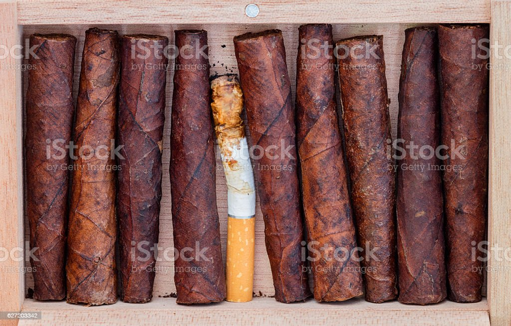 Where is my cigar? stock photo