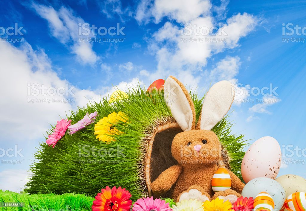 Where the Easter Bunny lives stock photo