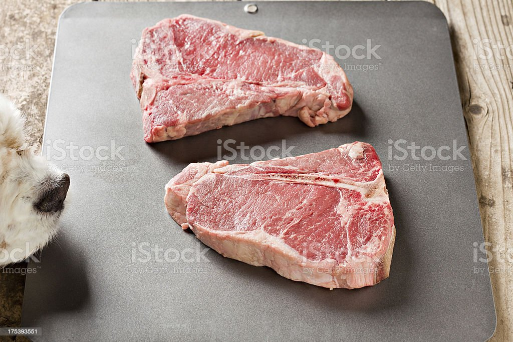 Where's The Beef? royalty-free stock photo