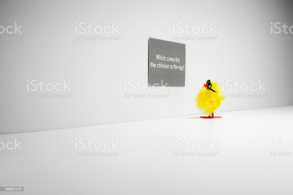 Which came first, chicken or the egg? Chick Humor Fun stock photo