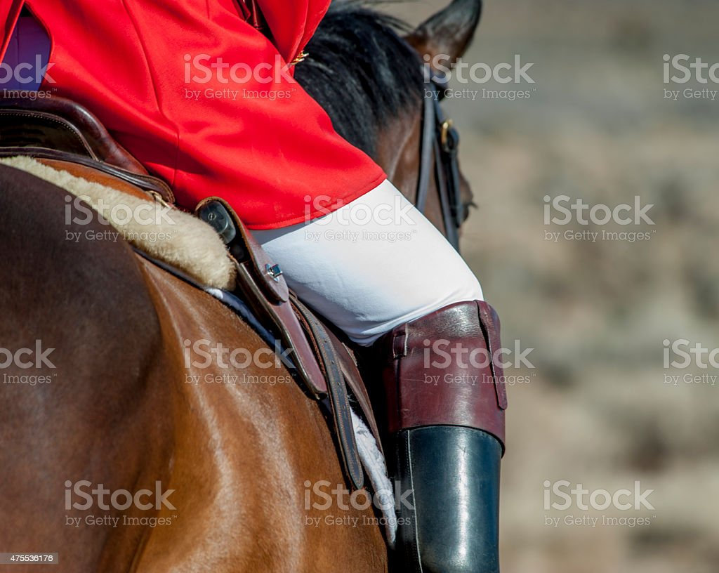 Whipper-in with White Breeches stock photo