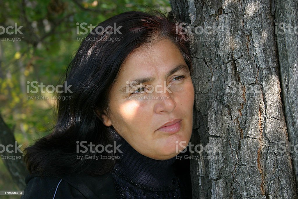 Whisper of a wood royalty-free stock photo