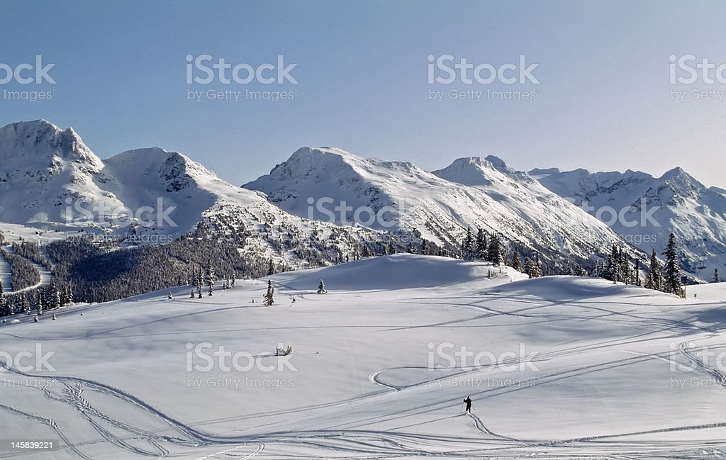 Whistler Mountain back bowl. Site of 2010 Winter Olympics stock photo